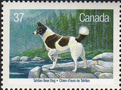 A Tahltan Bear Dog on a Canadian postage stamp