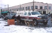Photo of the 2000 Yukon Quest World's Strongest Dog Team - this group of huskies is from tour operator Uncommon Journeys.